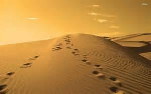 footprints3.jpg