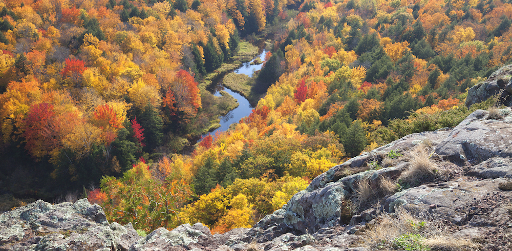 river-in-michigan-surrounded-by-trees-in-fall-PUC463Q